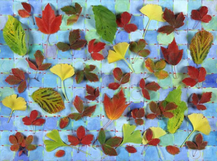 LEAVES ON A GRID, 2005