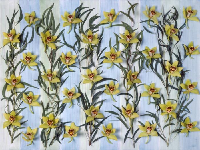 ORCHIDS & EUCALYPTUS 2006
