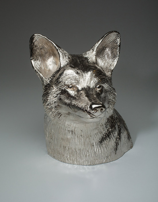 Coyote Bust