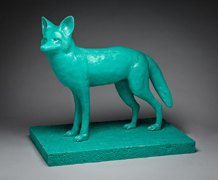 Sea Green Coyote
